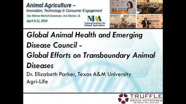 Global Efforts on Transboundary Animal Diseases