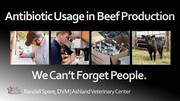Antibiotic Usage in Beef Production