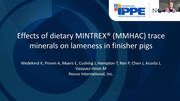 Effect of Dietary MMHAC Trace Minerals on Lameness in Finisher Pigs
