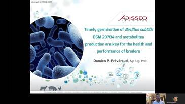 Timely germination of Bacillus subtilis DSM 29784 and metabolites production are key for the health and performance of broilers
