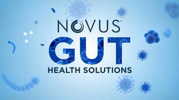 Novus Gut Health Solutions