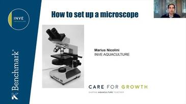 How to set up a microscope