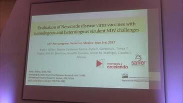 Patti Miller speaks about vaccines for Newcastle disease