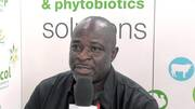 Phytogenics solutions for Nigeria