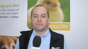 Poultry: More effective immune response with plasma