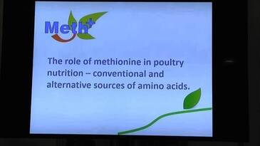 The role of methionine in poultry nutrition - conventional and alternative sources of amino acids