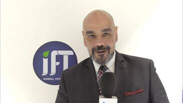 Animal Health: IFT Corporation and their work since 1989 - Interview with their CEO