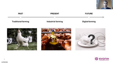 The Digital Evolution of the Poultry Industry: Imagine. Collaborate. Gain.