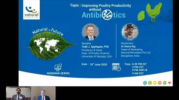 Improving Poultry Productivity without Antibiotics
