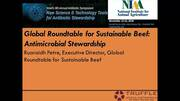 Global Roundtable for Sustainable Beef: Antimicrobial Stewardship
