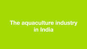 The aquaculture industry in India