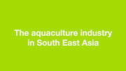 The aquaculture industry in SE ASIA