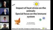 Heat Stress: Focus on the immune system