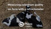 Measuring colostrum quality with Phileo experts