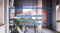 A Safe and Efficient Feed Production Line Built in Egypt