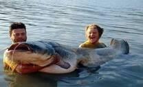 fish bond