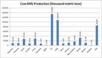 Cow milk production
