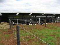Access to pasture