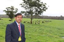 Future Dairy farm Camden Australia