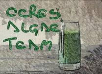 CCRES ALGAE SMOOTHIE