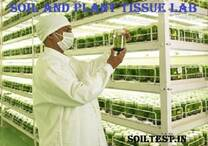 Soil and Plant Nutrients Laboratory