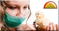 Poultry Health Management .
