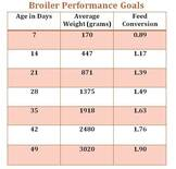 broiler performance goal