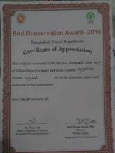 Birds Award