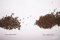 ZHENG CHANG Small-aperture Dies Create High-quality Pellets