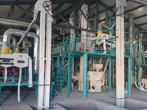 How To Effectively Solve The Plight Of China's Corn Processing Machine Development?