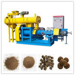 floating fish feed produced by fish feed extruder