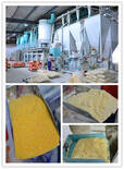Large Scale Corn Processing Plant