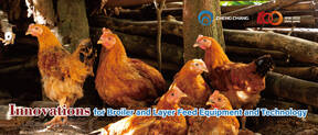 Innovations for Broiler and Layer Feed Equipment and Technology