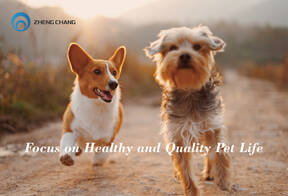 ZHENG CHANG Pet Food Production Solution