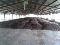 Sistema de enfriamiento de planta de Abono Orgánico