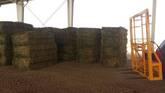 Alfalfa/Lucerne Hay price