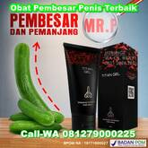 Apotek Jual Titan Gel Surabaya 085225782007 Pembesar Mr.P Terbaik No.1