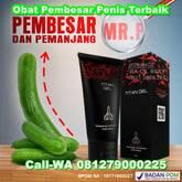 Apotek Jual Titan Gel Palembang 081279000225 Pembesar Mr.P Terbaik