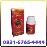 Jual Minyak Lintah Papua Asli Di Batam 0821-6765-4444 COD