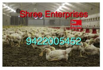 Poultry Farm Insulation  and Polynum Bubble Plastic