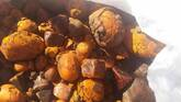 Cow gallstones for sale at affordable Prices