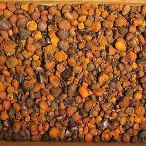 Ox Gallstones for sale for sale,whole sales quality dry seahorse.