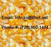 Buy Dry Yellow Maize Corn For Animal Feed And Human Consumption In Sweden ,E-Mail: Info.Zu@Chef.Net
