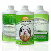 Grow B-Plex - Poultry Vitamin B-Complex with Vitamin E ,Vitamin -C,Amino Acids & Minerals.