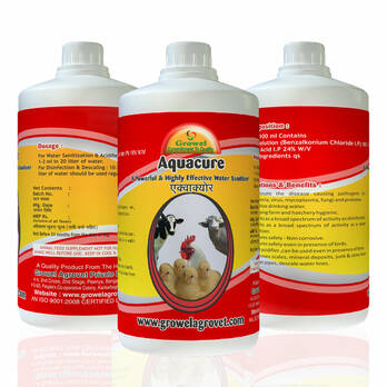 Aquaure -A Powerful & Highly Effective Water Sanitizer & Disinfectant for Poultry.
