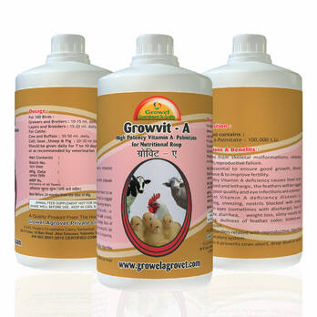 Growvit -A Powerful Vitamin- A Palmitate Nutritional Roup for Poultry & Cattle .