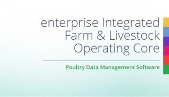 eIFLOC - Poultry Projection Software