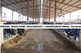DAIRY SHED & Dairy Equipments