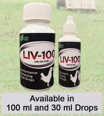 LIV-100