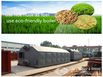 biomass chain grate boiler for food industry